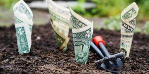 hoeveel geld kun je verdienen met beleggen